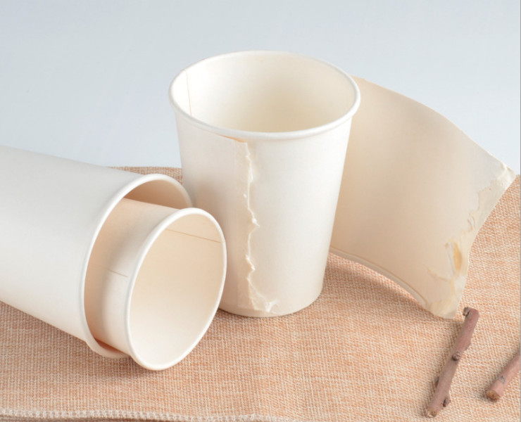 (Box) Hot Drink Cup Disposable Thick Double-Layer Hollow Coffee Paper Cup Insulation Anti-Hot Milk Tea Cup (Door Delivery Included)